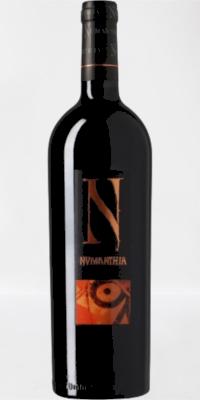 Red wine Numanthia 2005 (0,75)