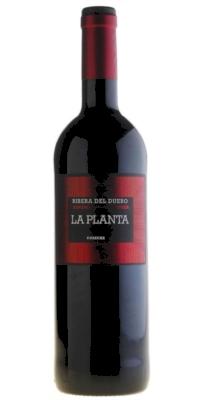 Vino tinto La Planta Roble 2016 (Arzuaga)